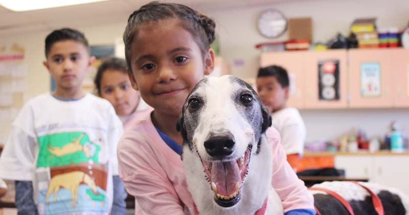 Rico of Colorado enjoys visiting students to raise awareness about dog racing