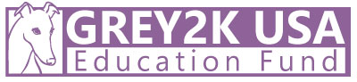 the GREY2K USA Education Fund logo